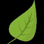 leaf package